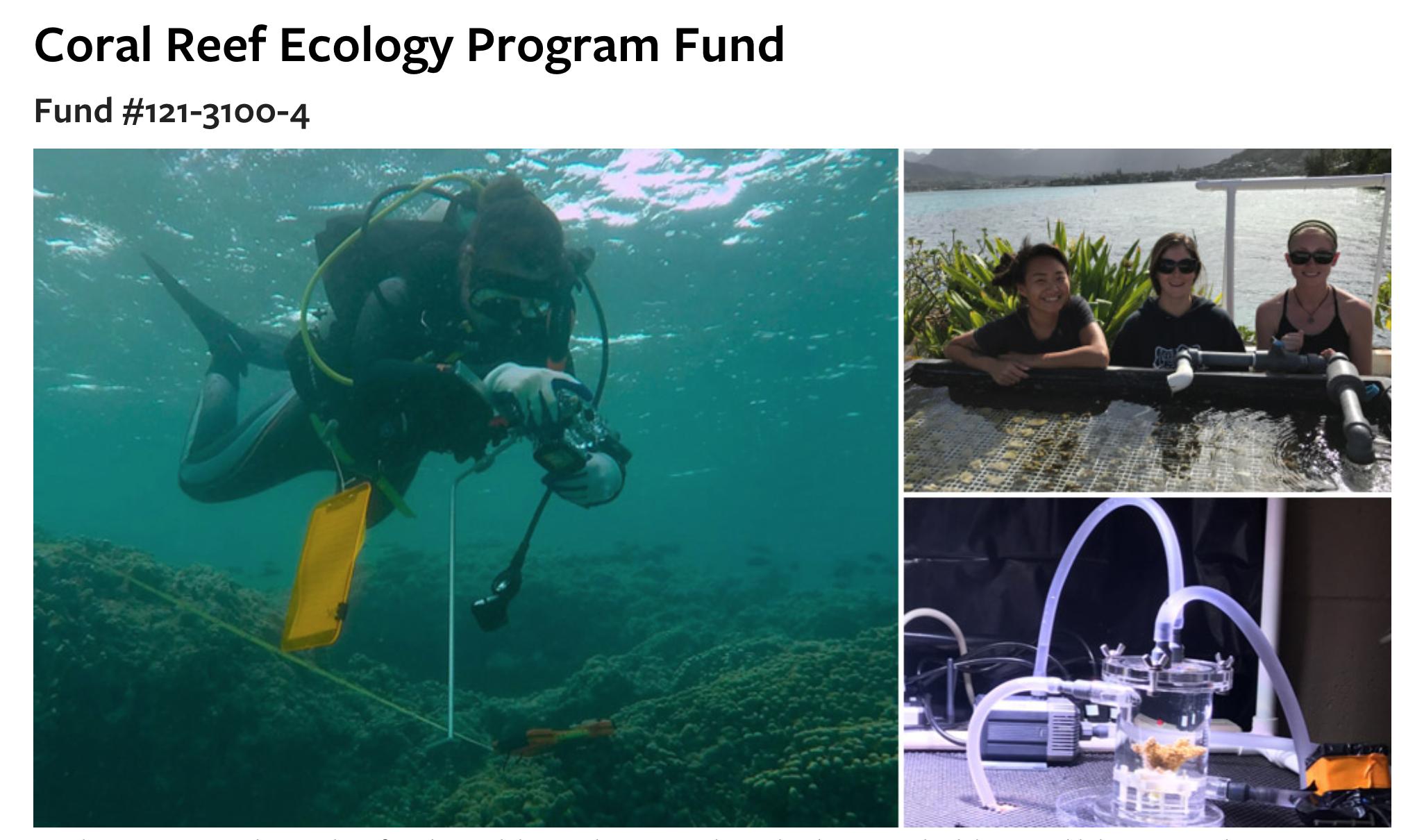 donate  u2013 coral reef ecology lab